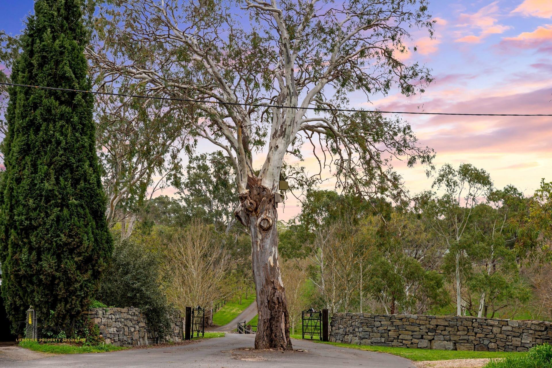 441 Springs Road Mount Barker Springs