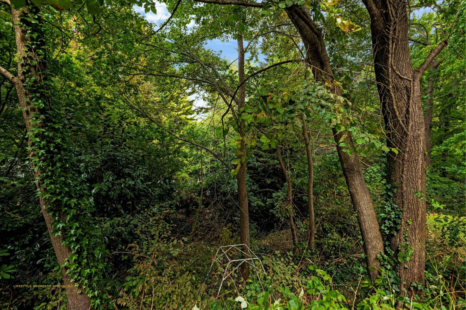 5 Waverley Ridge Road Stirling